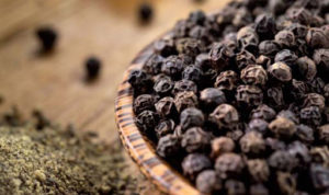 Black Pepper is indigestible