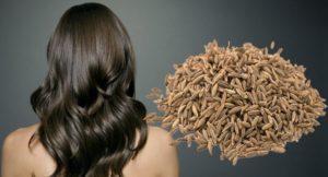 Cumin Seeds for Hair Growth